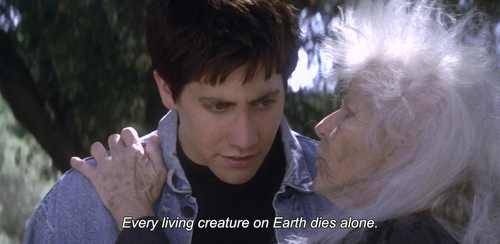 14 donnie darko quotes