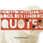 the best quotes about dogs,best 36 dog quotes