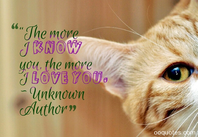 """The more I know you, the more I love you."" ~ Unknown Author Picture about i love you quotes"