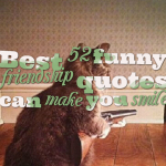 Best 52 funny friendship quotes can make you smile