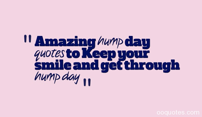 Hump Day Funny Facebook Quotes. QuotesGram