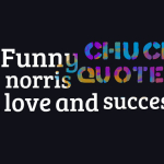 Funny chuck norris quotes on love and success