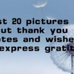 Best 20 pictures about thank you quotes and wishes to express gratitude