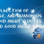 Collection of inspirational, wise, and humorous Good Night quotes and Good Night sayings
